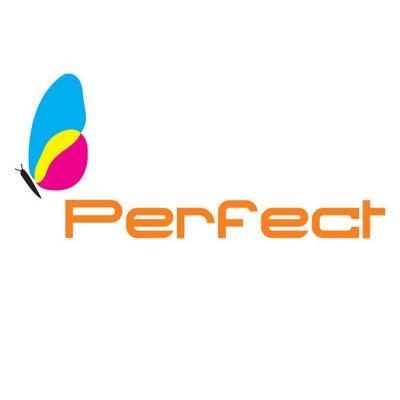 techno_perfect_logo